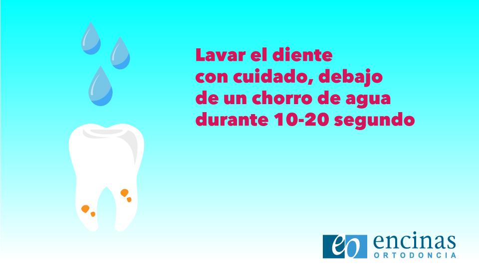 Avulsión Dental -Ortodoncia Encinas- Qué Hacer